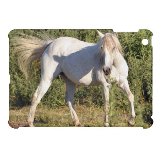 White Horse in Field Horse-lover's Case iPad Mini Cover