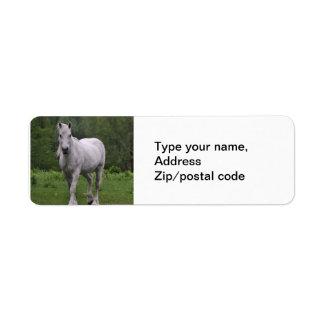 White Horse In Field Label