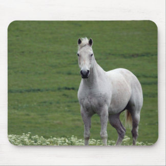 White Horse in Field Mouse Pad