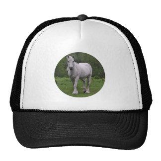White Horse In Field Trucker Hat