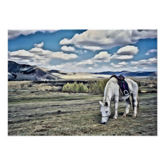 White horse in field with clouds poster