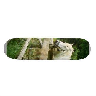 White Horse in Paddock Skate Board