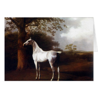 White Horse in Pasture Card