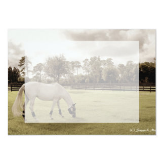 white horse in pasture grazing old style card
