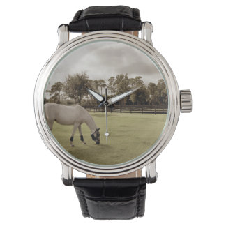white horse in pasture grazing old style wrist watch