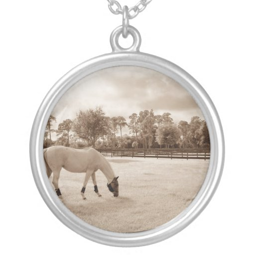white horse in pasture grazing sepia necklace