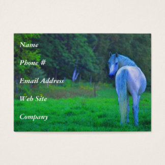 White Horse in Pasture Horse Business Card