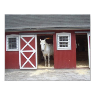 White Horse In Red Barn Card
