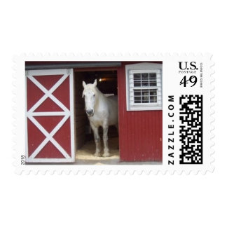 White Horse In Red Barn Stamp