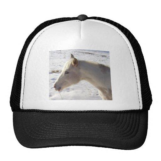 White Horse in Snow Trucker Hats