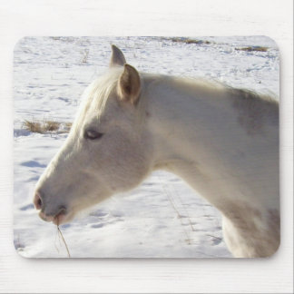 White Horse in Snow Mouse Pad