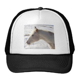 White Horse in Snow Trucker Hat