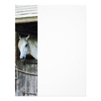 White Horse in Stable Letterhead