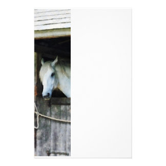White Horse in Stable Stationery