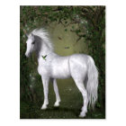 White Horse in the Woods with Hummingbirds Postcard