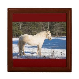 White Horse In Winter Rural Maine Gift Box