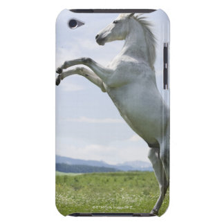 white horse jumping on meadow iPod Case-Mate case
