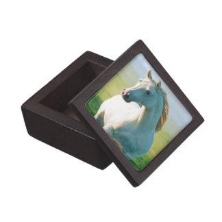 White Horse Keepsake Box