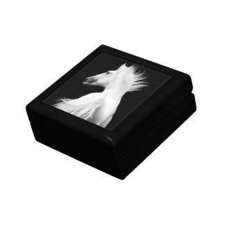 White Horse (Kladruber Stallion) Gift Box