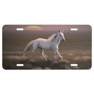 White horse license plate