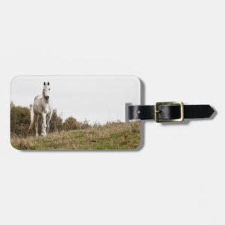 White horse luggage tag