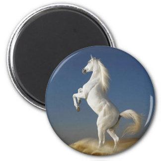 White Horse magnet