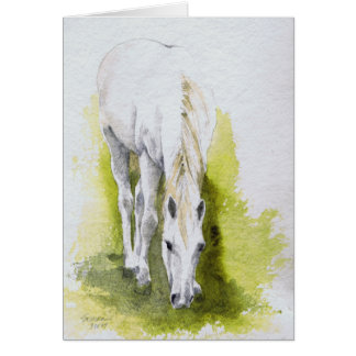White Horse Note Cards