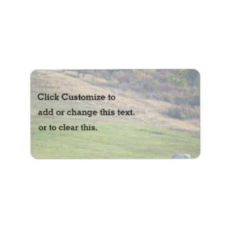 White horse on a green Hill Address Label