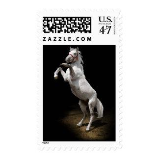 White Horse Prancing Postage
