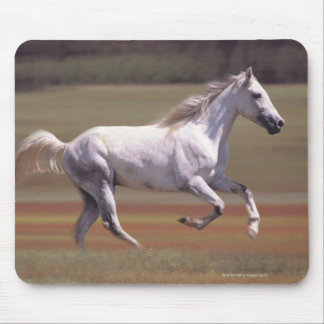 White horse running in field mouse pad