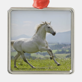 white horse running on meadow metal ornament