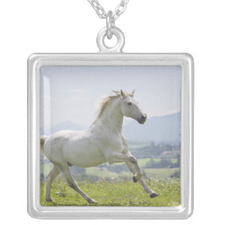 white horse running on meadow silver plated necklace