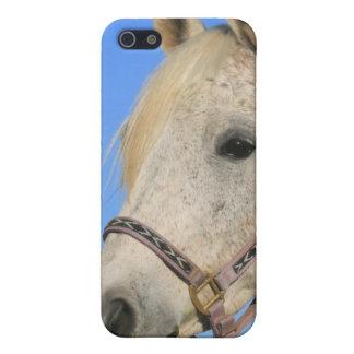 White Horse Speck Case