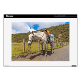 White Horse Tied Up at Cotopaxi National Park Decal For Laptop