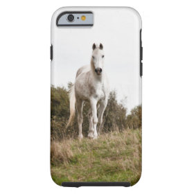 White horse tough iPhone 6 case