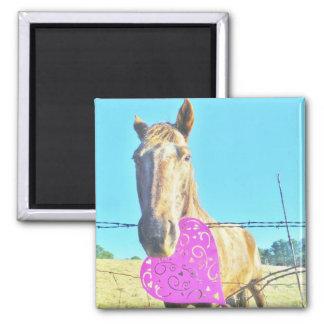White horse Valentine pink Heart Magnet