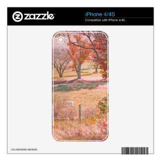 White Horse with Rust and Green Autumn Colors iPhone 4 Skins