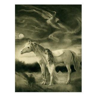 white horse woman postcard