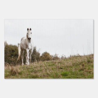White horse yard signs