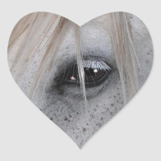 White Horse's Eye Equine Photography Heart Stickers