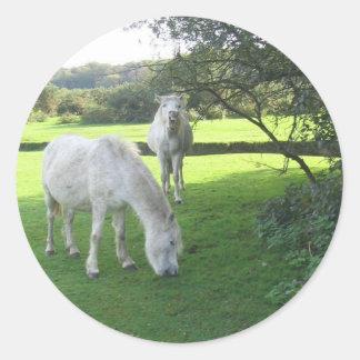 White Horses Grazing Sticker
