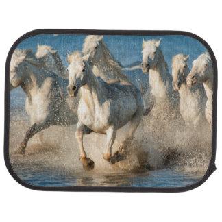 White horses of Camargue, France Car Floor Mat