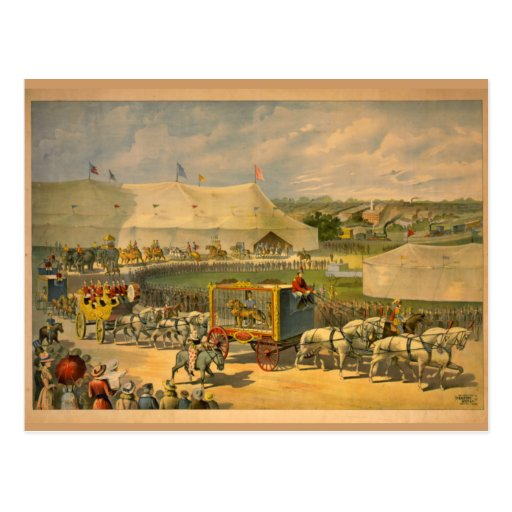 White Horses Parade Circus Poster Post Card