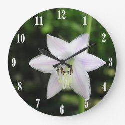 White Hosta Flower Wallclock