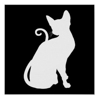 White House Cat Posters