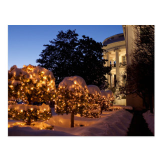 White House Christmas Lawn Decorations Postcard