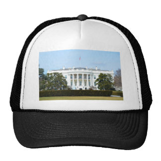 White House From The Lawn Trucker Hats