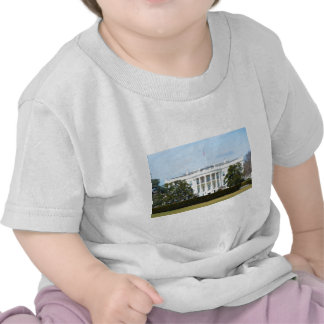 White House From The Lawn Shirts