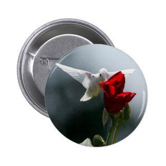 White Hummingbird Pinback Buttons