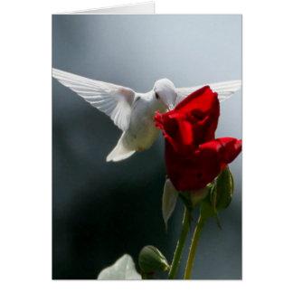 White Hummingbird Card